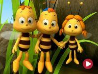 Pszczółka Maja, Uciekinier