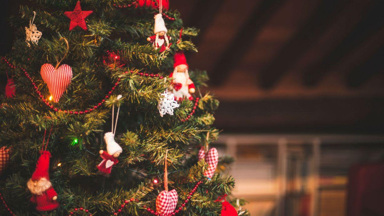 Święta coraz bliżej. Czy wiesz już jak udekorujesz choinkę? (Fot. Shutterstock)
