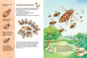 bliskie-rzeczywistosci-piekne-ilustracje-przedstawiajace-pszczoly-miodne-w-ich-niezwyklym-swiecie