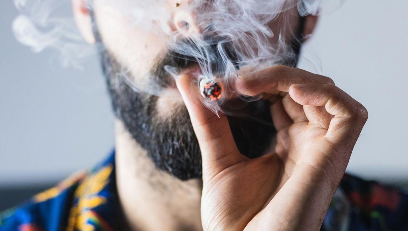 Nie wszyscy użytkownicy marihuany zauważają pogorszenie wzroku (fot. Shutterstock/Pau Novell Aran)
