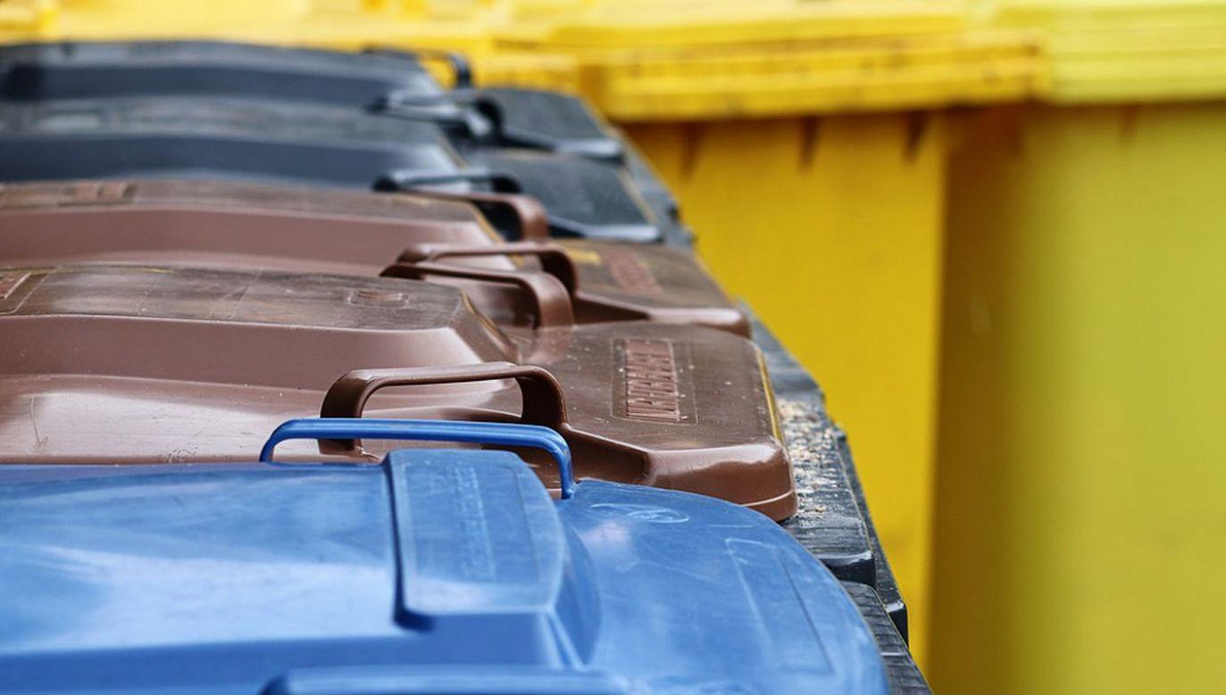 Nowe przepisy mają zwiększyć motywację mieszkańców do segregowania odpadów (fot. Pixabay / manfredrichter)