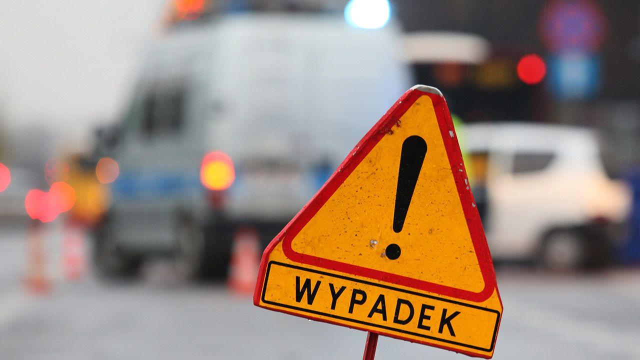 Zdarzenie miało miejsce na przejściu dla pieszych z sygnalizacją świetlną (fot. arch.PAP/Leszek Szymański)