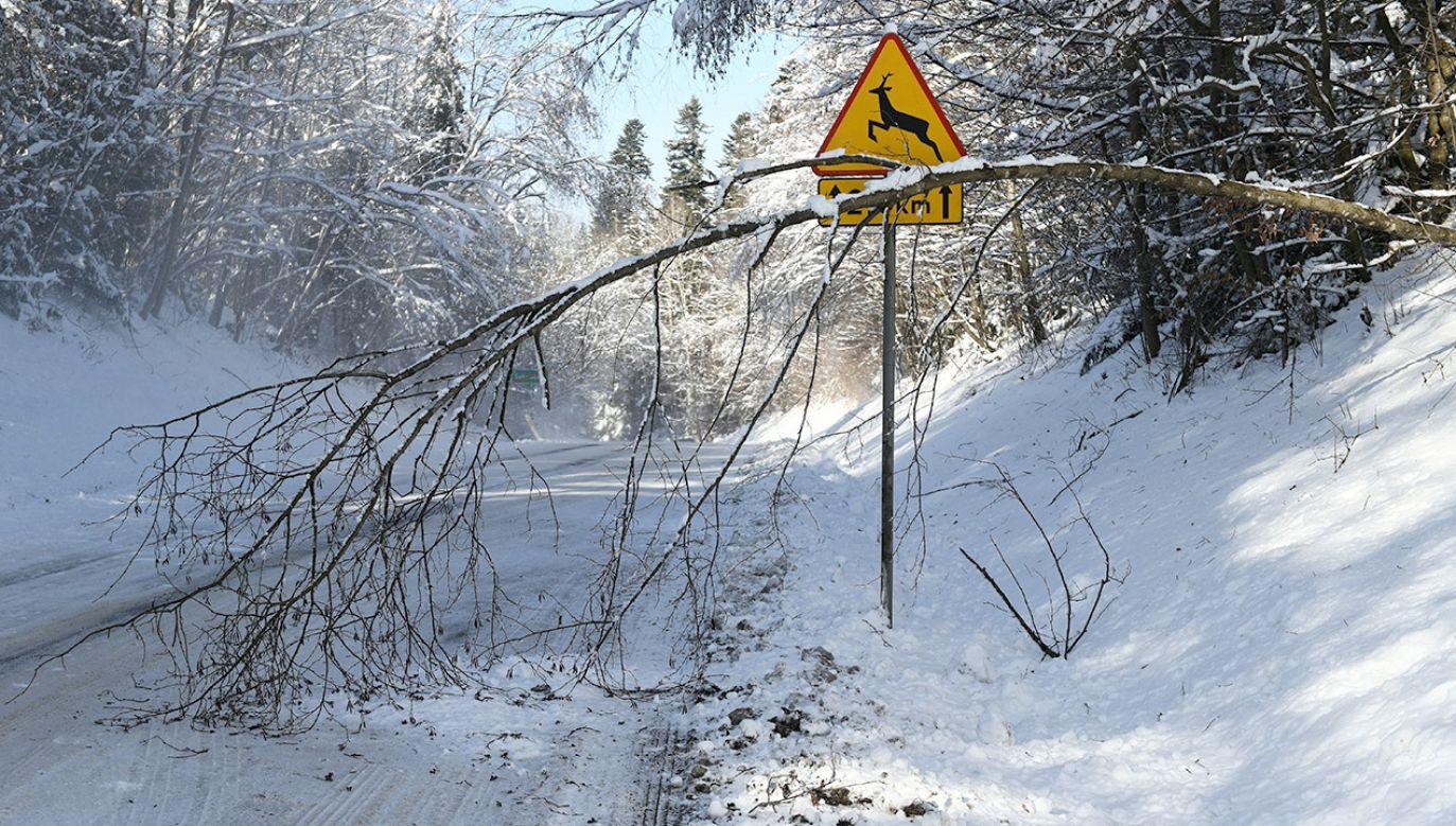 Zalecana jest ostrożność i śledzenie komunikatów o pogodzie (fot. PAP/Darek Delmanowicz)
