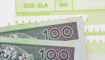 Rząd planuje znmiany w systemie składek ZUS od przyszłego roku (fot. Shutterstock/whitelook)