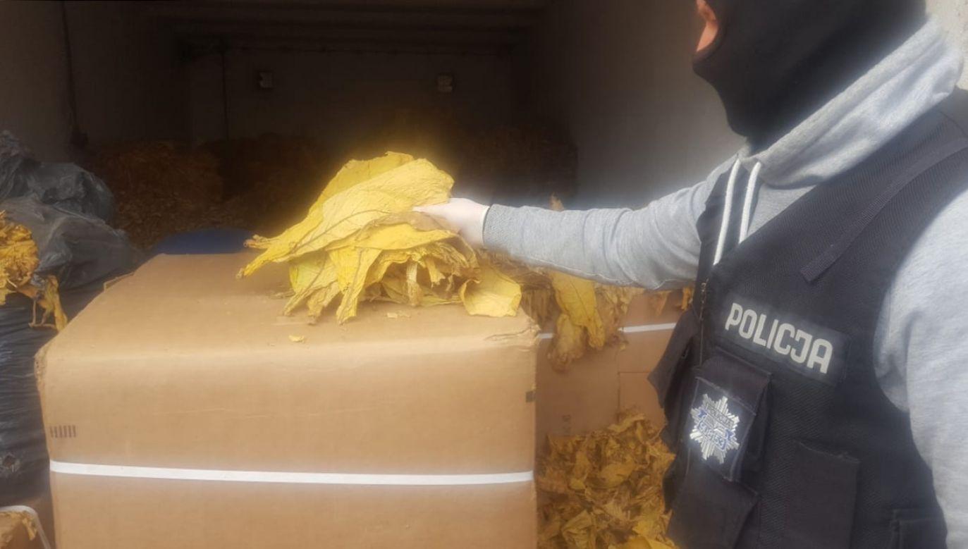 Policjanci zamiast zboża ujawnili w kartonach i workach nylonowych sprasowane liście tytoniu (fot. Policja Wielkopolska)