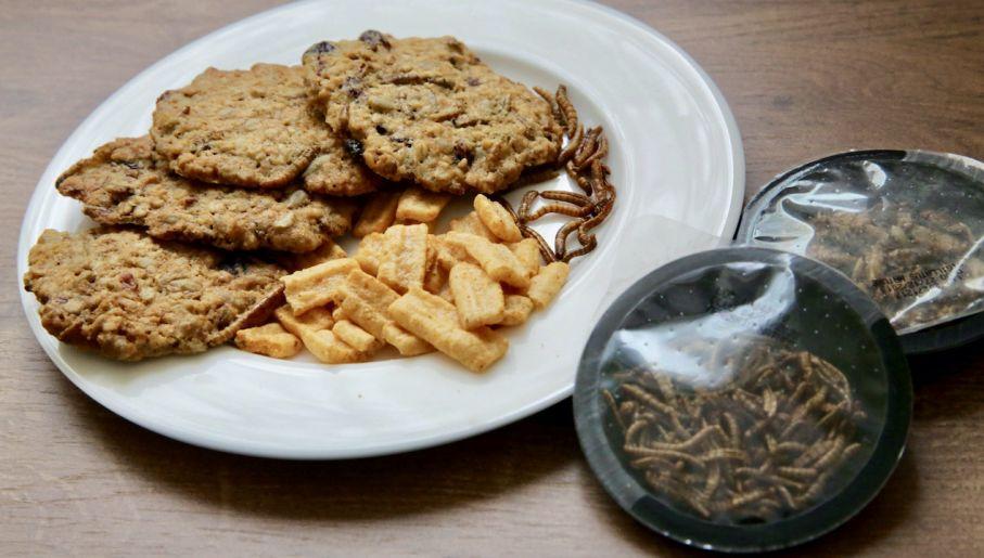 Ciastka, czipsy i suszone larwy-przekąski z mącznika młynarka (fot. PAP/T.Waszczuk)