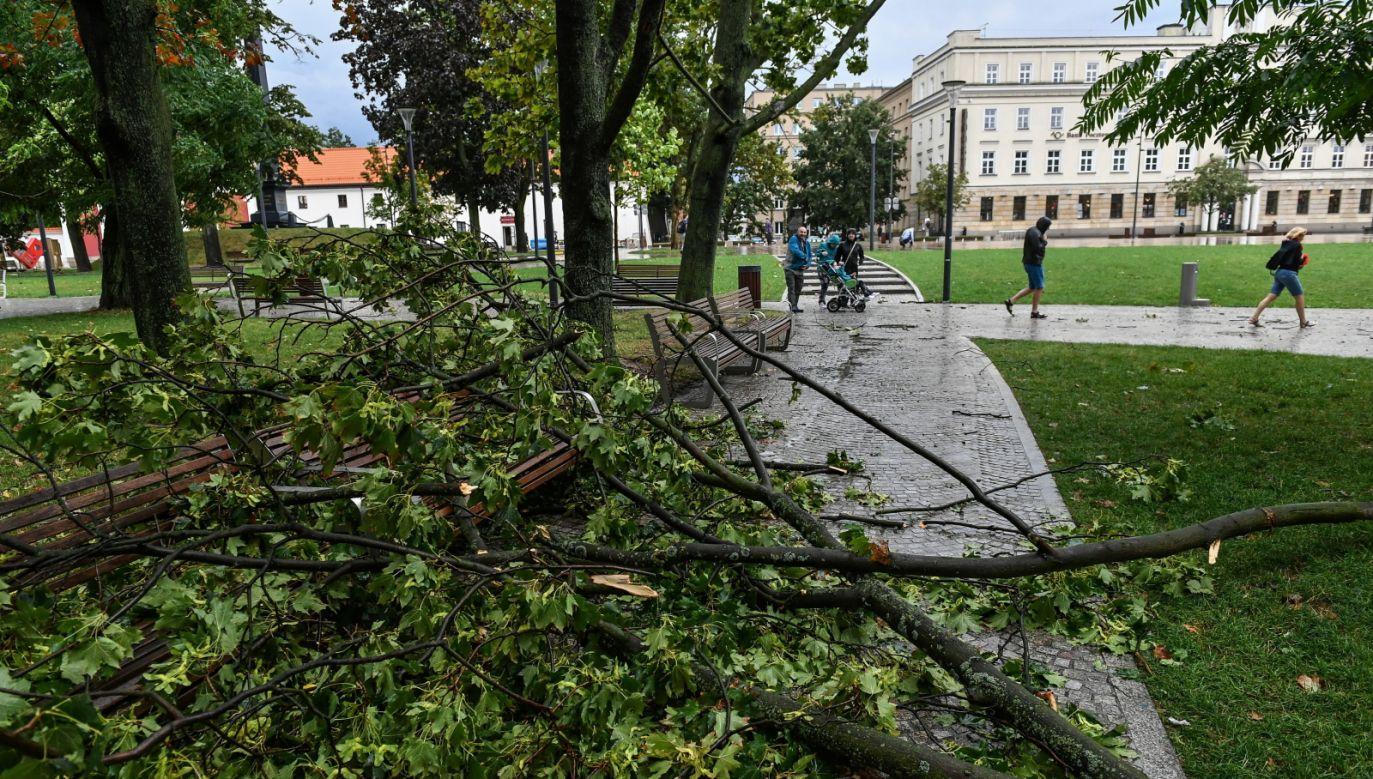 Materiały przesyłajcie na twoje@tvp.info (fot. PAP/Wojtek Jargiło)