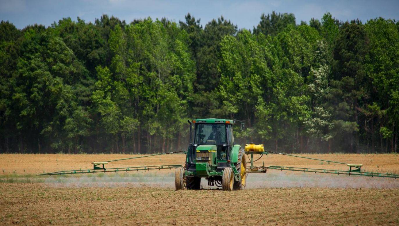 Podrabiane pestycydy to duże ryzyko (fot. Pexels)