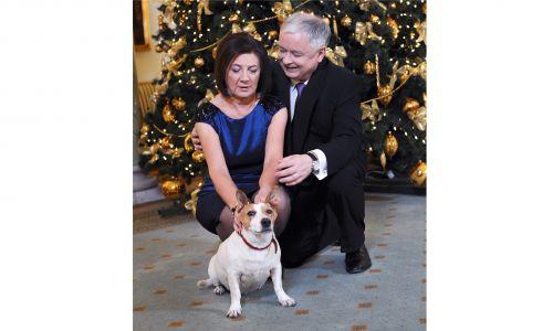 Lulę do domu przywiózł Lech Kaczyński, a znalazł ją na stacji benzynowej w Mławie w Wielki Czwartek 2000 roku. Na zdjęciu para prezydencka z Lulą przed świętami Bożego Narodzenia w 2009 roku.  Fot. PAP/Jacek Turczyk