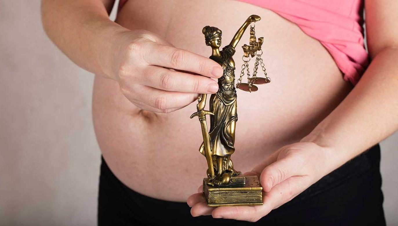 Wyrok zapadł, pomimo sprzeciwu matki kobiety i pracownika socjalnego, który współpracował z rodziną (fot. Shutterstock/Tolikoff Photography)