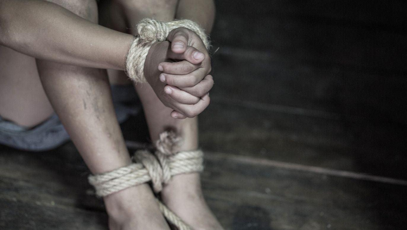 W ostatnim czasie stwierdzono kilka podobnych przypadków okrutnych i niewyjaśnionych dotychczas zbrodni (fot. Shutterstock/Tinnakorn jorruang)