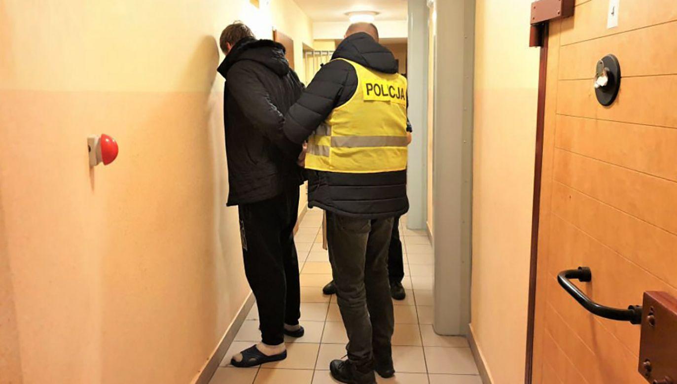 19-latek został aresztowany na trzy miesiące (fot. Policja śląska)