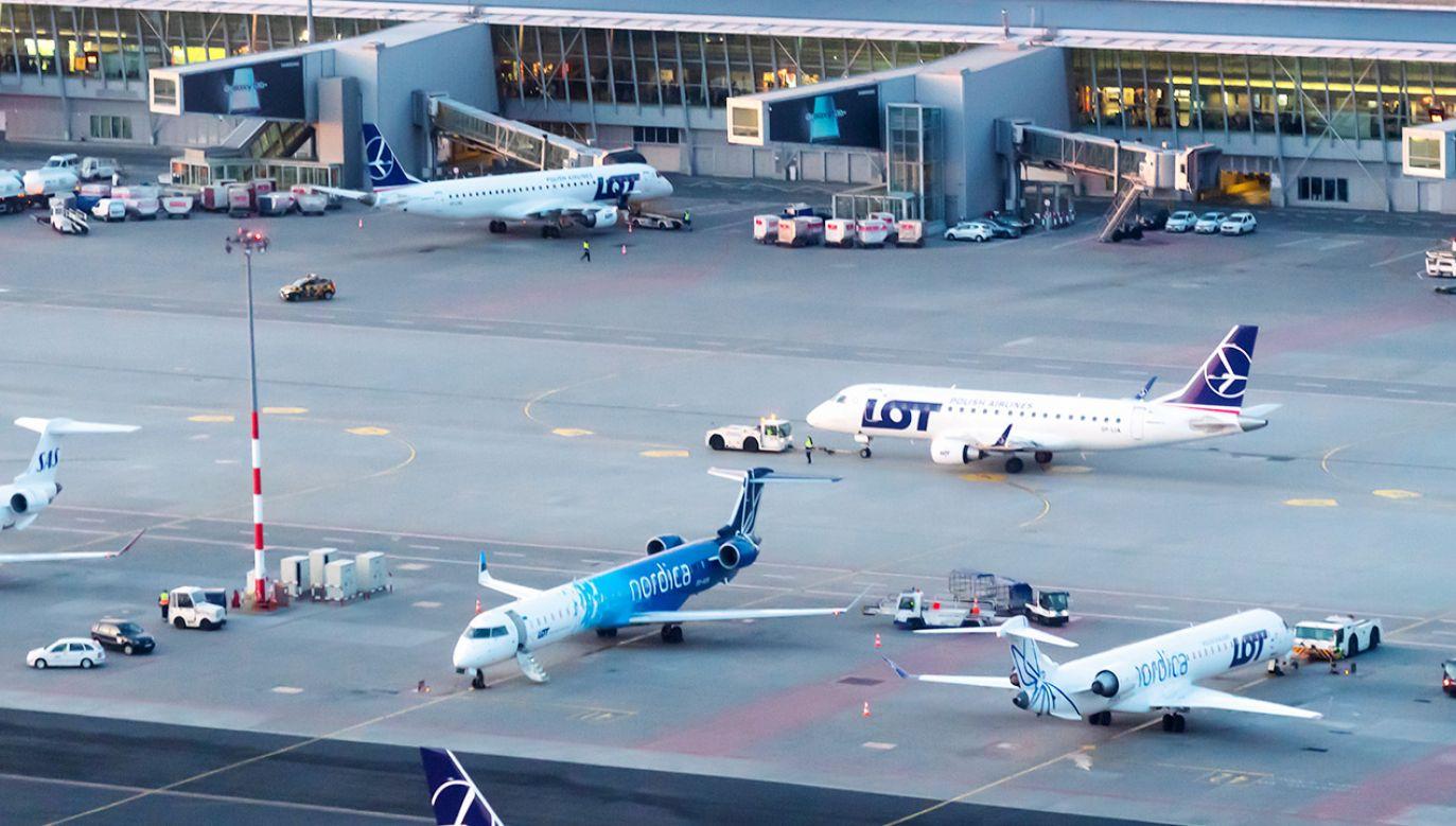 Służby sprawdzają samolot, który przyleciał z Kijowa (fot. Shutterstock)
