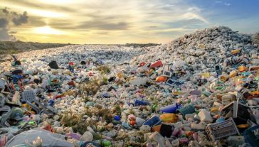 W 2015 r. wytworzono 448 mln ton plastiku, a jego produkcja ciągle się zwiększa (fot. Shutterstock/MOHAMED ABDULRAHEEM)