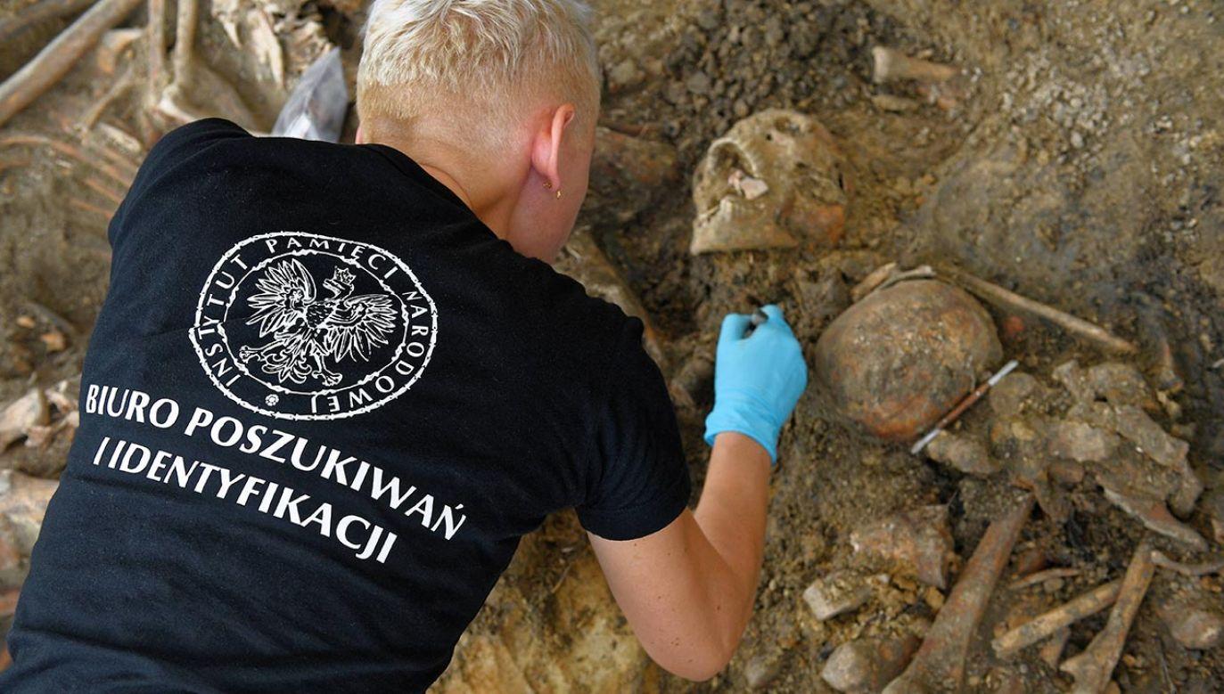 IPN opublikował dziś 29-punktowe stanowisko ws. współpracy polsko-ukraińskiej dot. ekshumacji, pochówków i upamiętnień ofiar wojen i ludobójstwa (fot. PAP/Marcin Kmieciński)