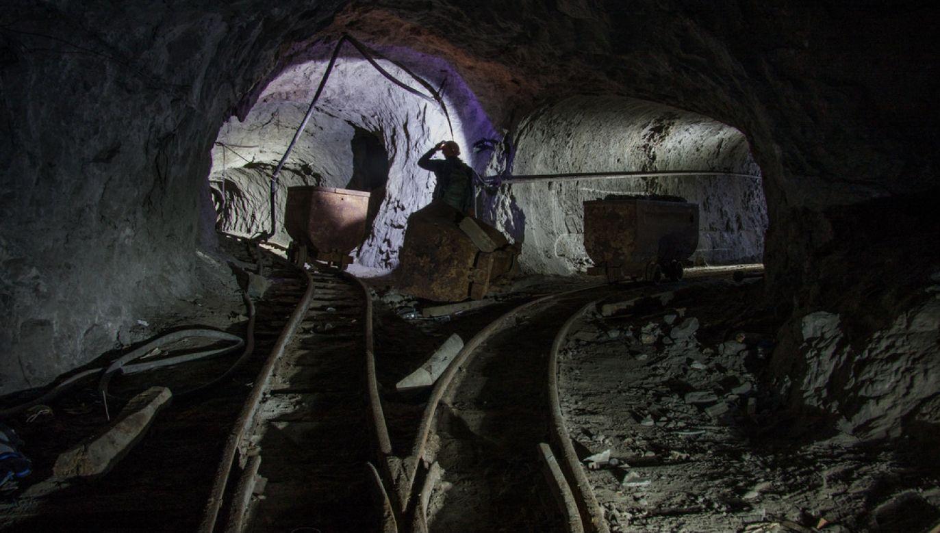 Górnicy byli konsumentami (fot. Shutterstock/deadmeat243)