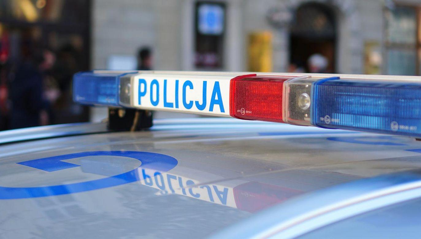 Na całe szczęście poszukiwany mężczyzna został szybko odnaleziony i zatrzymany przez funkcjonariuszy (fot. Shutterstock/travellifestyle)