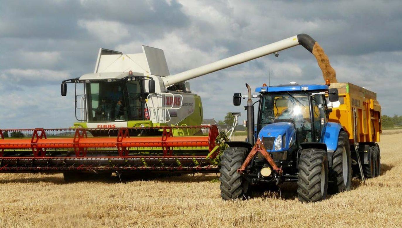 Unia Europejska pracują nad nową wspólną polityką rolną (fot. Pexels)