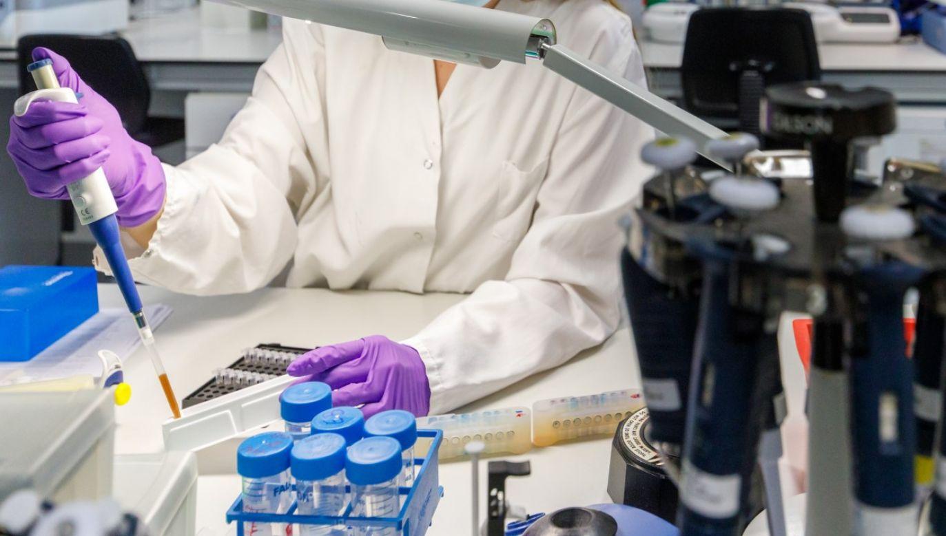 Specjaliści z Georgia State University zidentyfikowali cząsteczki, które hamują replikację wirusa (fot. Olivier Matthys/Getty Images)