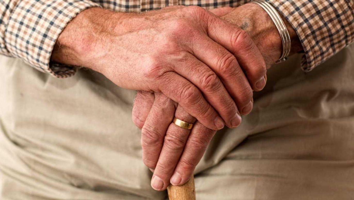 Pieniądze trafią do około 9 milionów emerytów (fot. Pexels)