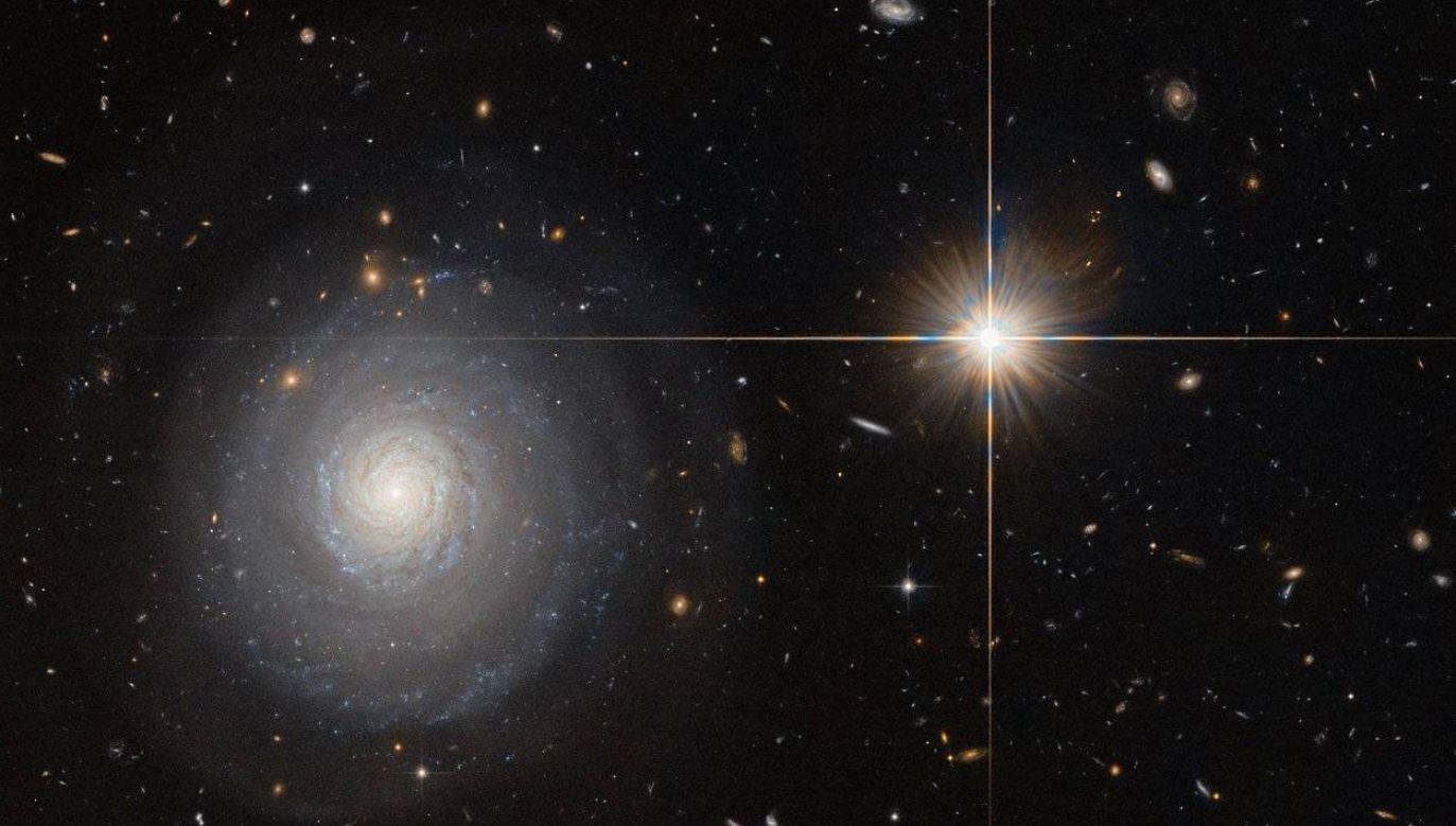 Obiekt przybył z przestrzeni międzygwiezdnej (fot.arch.PAP/Newscom/NASA)