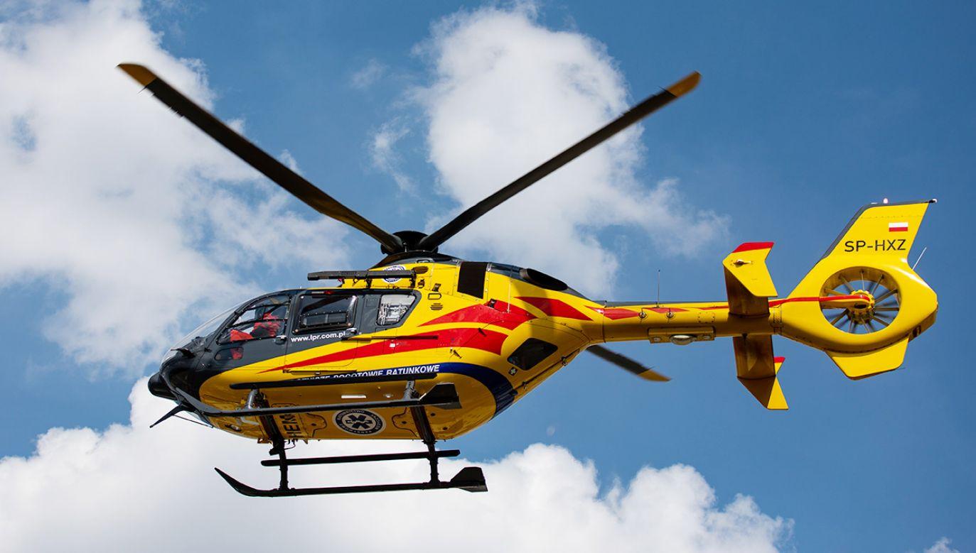 77-latek spadłz drzewa; na miejscu lądował śmigłowiec LPR (fot. Shutterstock)