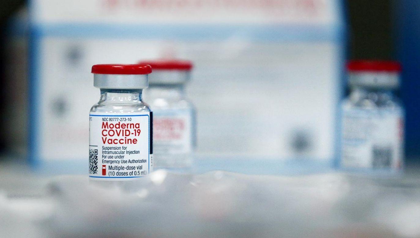 Szczepionka Moderny jest łatwiejsza w przechowywaniu i transporcie (fot. Craig F. Walker/The Boston Globe via Getty Images)