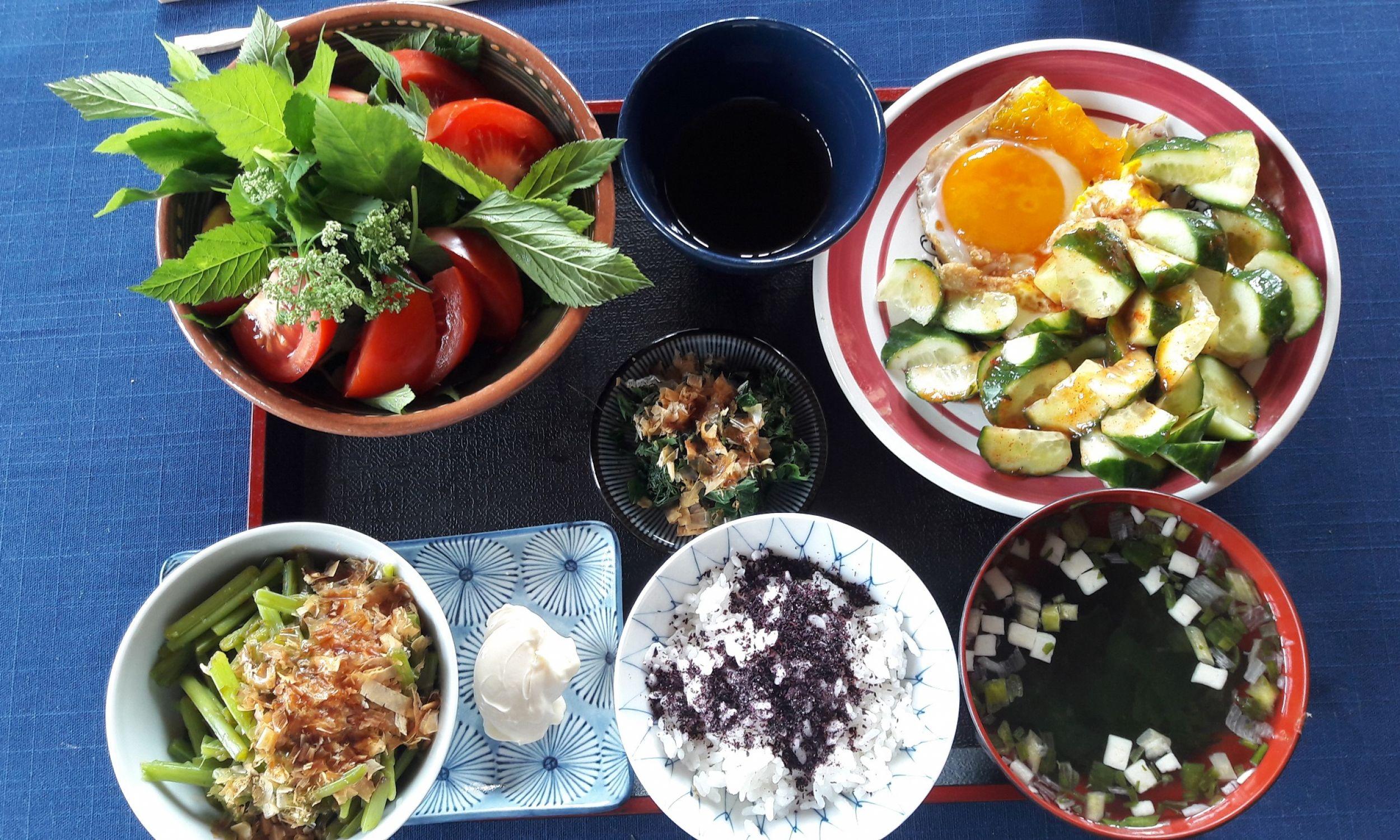 Lunch: sałata z chwastami, łodyga podbiału, ryż z suszoną japońską bazylią – shiso. Fot. Akiko Miwa