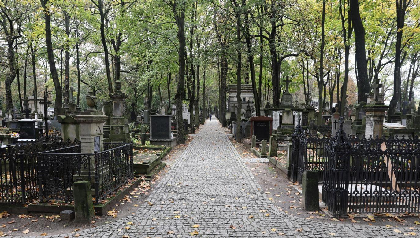Prymas zwrócił się z także z prośbą, aby nie organizować tradycyjnych procesji na cmentarzach (fot. PAP/Tomasz Gzell)