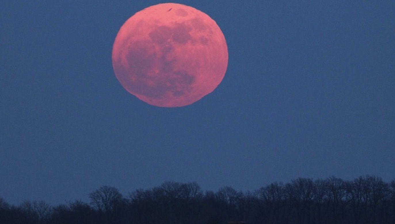 Obliczenia astronomiczne wskazują moment początku zaćmienia na godz. 19.46 polskiego czasu (fot. Jamie Cooper/SSPL/Getty Images)