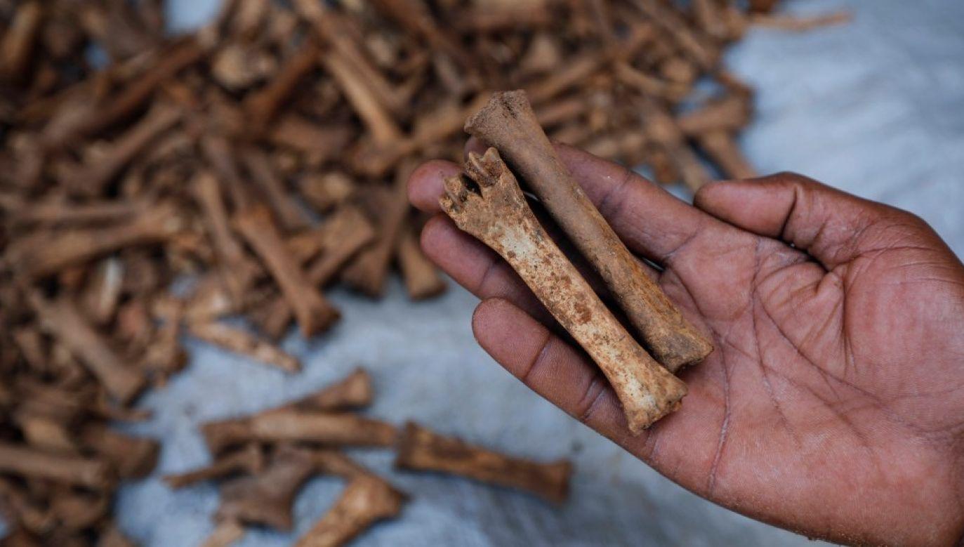 Bojówki Hutu wymordowały co najmniej 800 tysięcy Tutsich (fot. arch. PAP/EPA/DAI KUROKAWA)