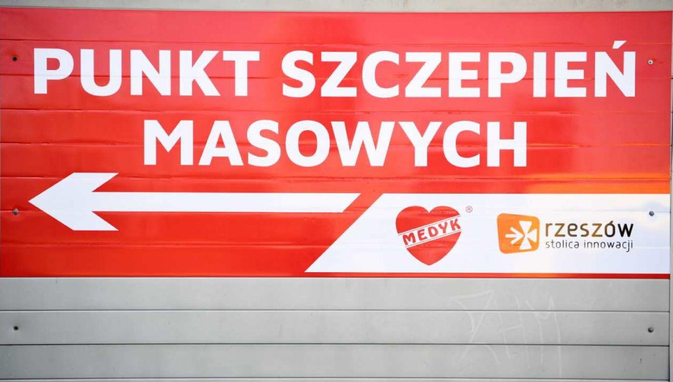 Dworczyk o szczepieniu ozdrowieńców (fot. PAP/Darek Delmanowicz)