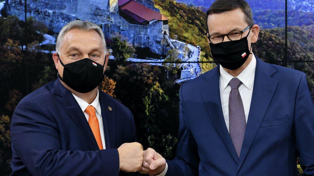 Victor Orban o roli Polski w Europie Środkowej (fot. arch.PAP/Radek Pietruszka)