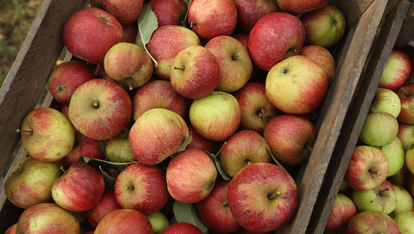 Producenci, którzy są zainteresowani eksportem jabłek na Tajwan w przyszłym sezonie powinni zarejestrować produkcję owoców do 30 kwietnia 2020 r.(zdjęcie ilustracyjne) (fot. Sean Gallup/Getty Images)