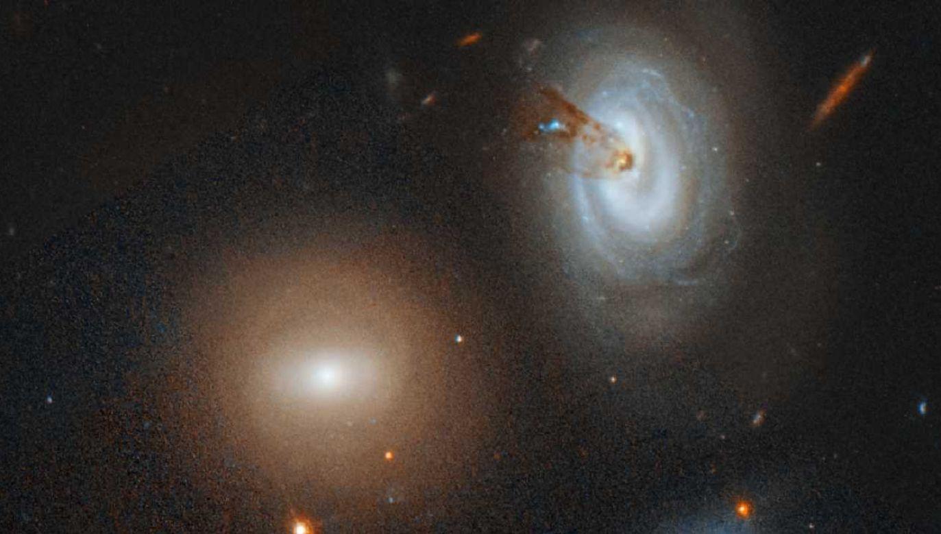 Galaktyki zachowują się jak ludzie (fot. NASA)