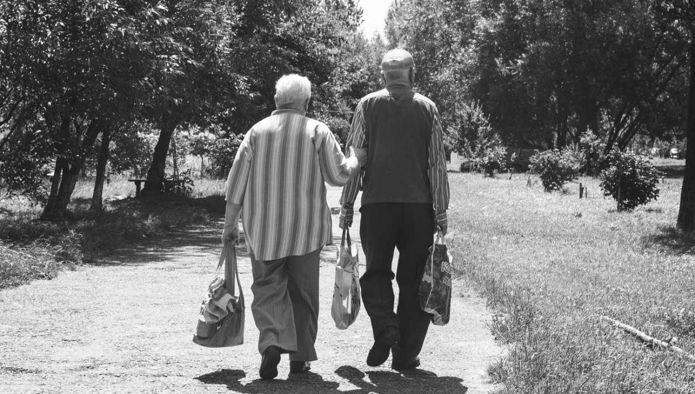 Waloryzacja rent i emerytur w Sejmie (Fot. Pavlofox z Pixabay)