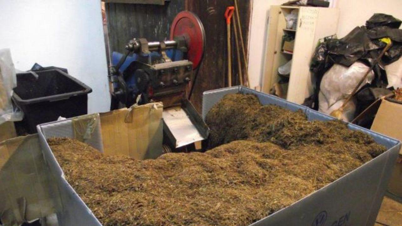 Nielegalne fabryki tytoniu wyrastają jak grzyby po deszczu (fot. Służba Celna)