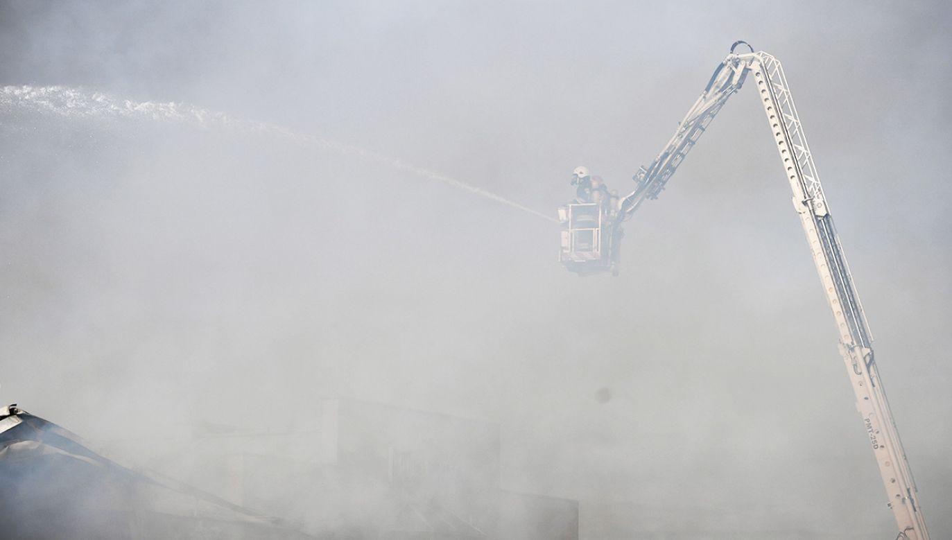 W akcji gaśniczej brało udział siedem zastępów straży pożarnej (fot. PAP/Darek Delmanowicz)