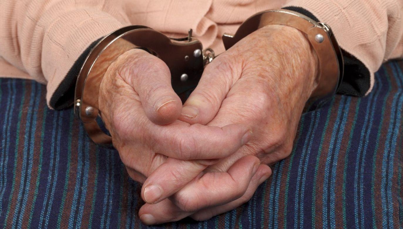 Grozi jej do 10 lat więzienia (fot. Shutterstock/Ocskay Mark)