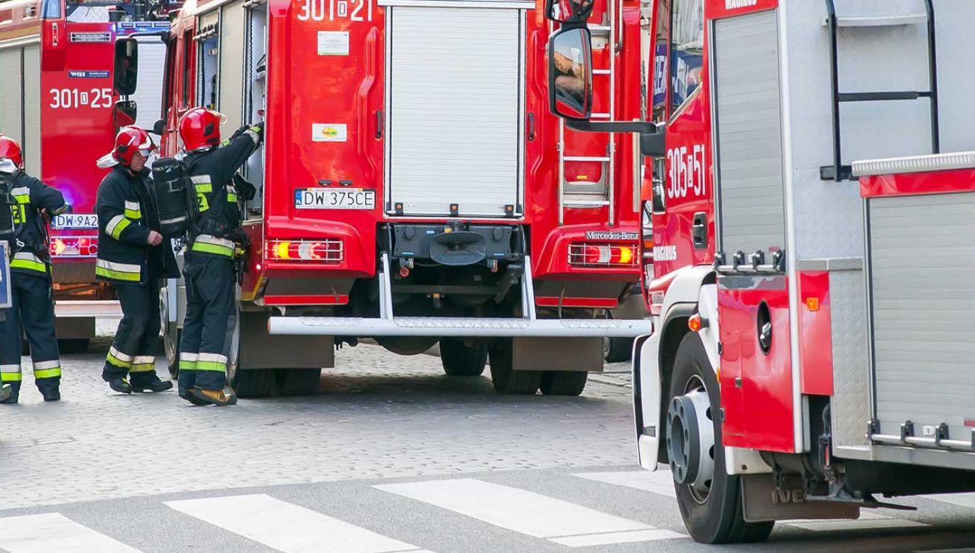 Na miejscu pracuowało sześć zastępów straży pożarnej (fot. Shutterstock/Emeryk III)