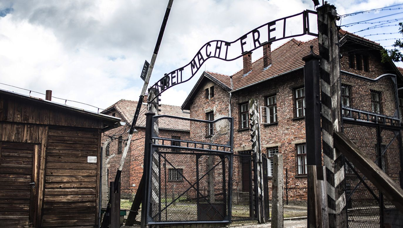 """""""Andrzej Przyłębski domaga się natychmiastowego sprostowania i poinformowania, że obozy koncentracyjne i obozy zagłady były niemieckimi obozami"""" (fot. Shutterstock/ bondvit)"""