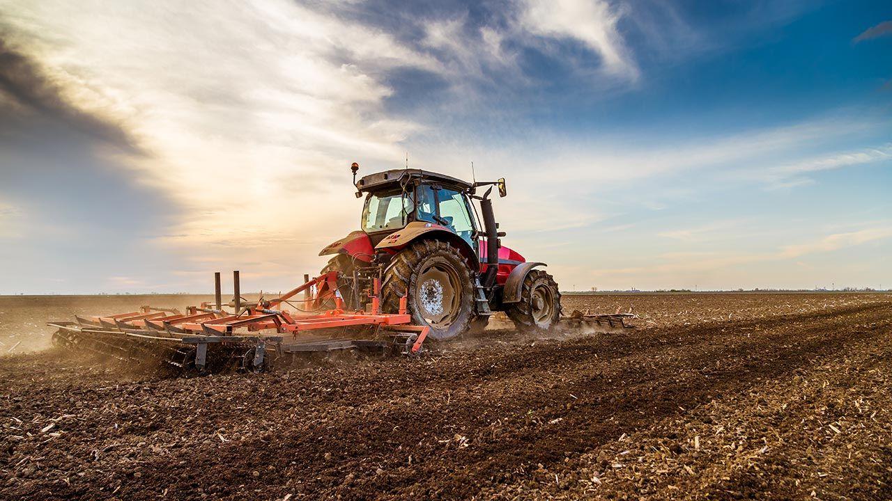 Środki z KPO wesprą kilka obszarów życia na wsi (fot. Shutterstock/oticki)