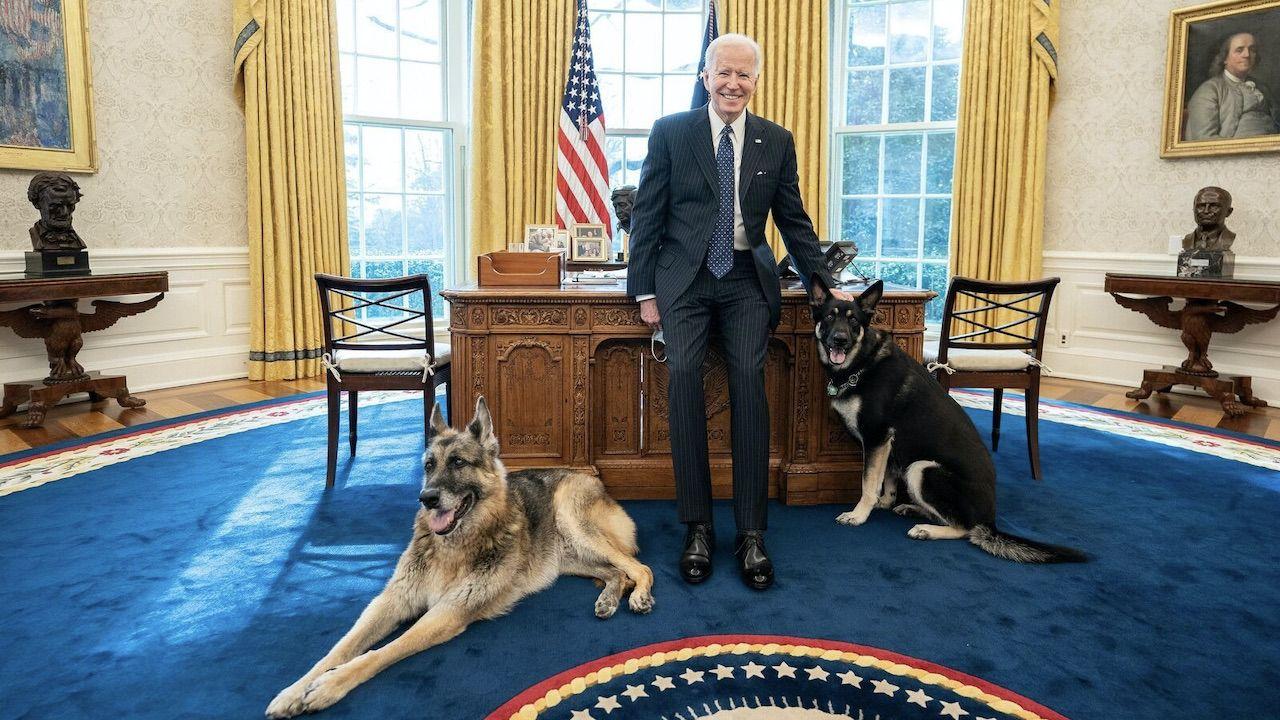 Psy wracają do rodzinnego domu Joego Bidena (fot. Adam Schulz/White House)