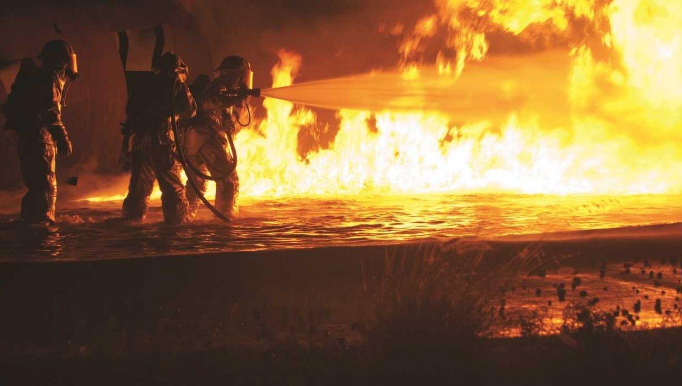 Pożar rozprzestrzeniał się bardzo szybko (fot. Pexels)