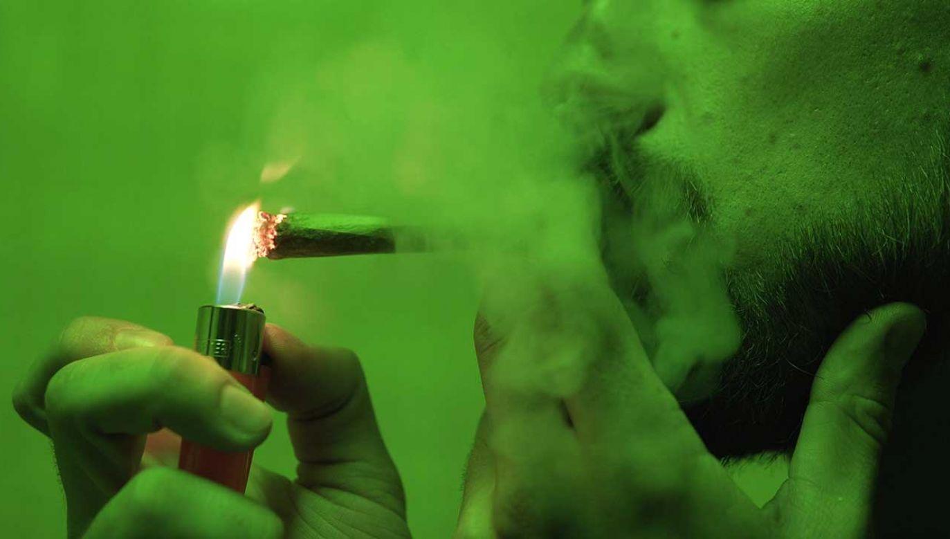 Naukowcy udowadniają, że skłonność do marihuany jest dziedziczna. (fot.Shutterstock/ontent_creator)