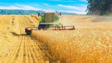Prezydent podkreślił, że rząd będzie walczył o to, aby dopłaty bezpośrednie dla polskich rolników osiągnęły taką wartość, jaką mają średnio w Unii Europejskiej (fot. Shutterstock/BUY THIS)