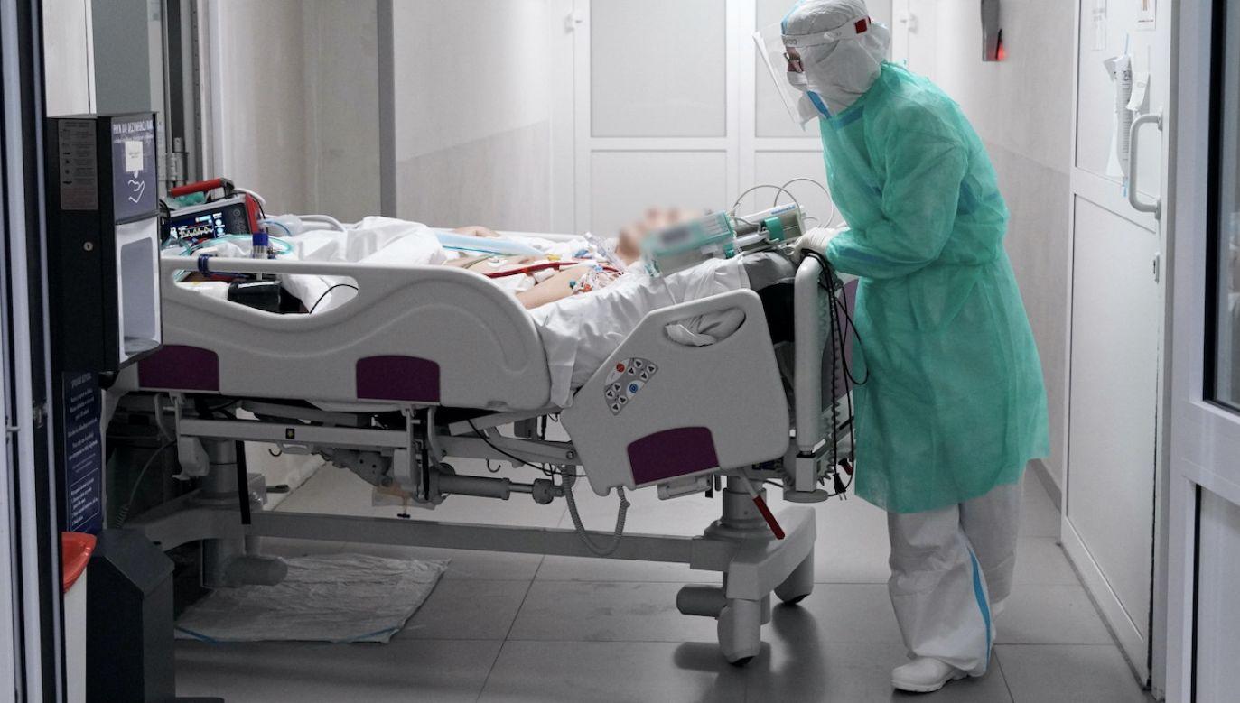 Raport o stanie epidemii w Polsce (fot. PAP/Leszek Szymański)