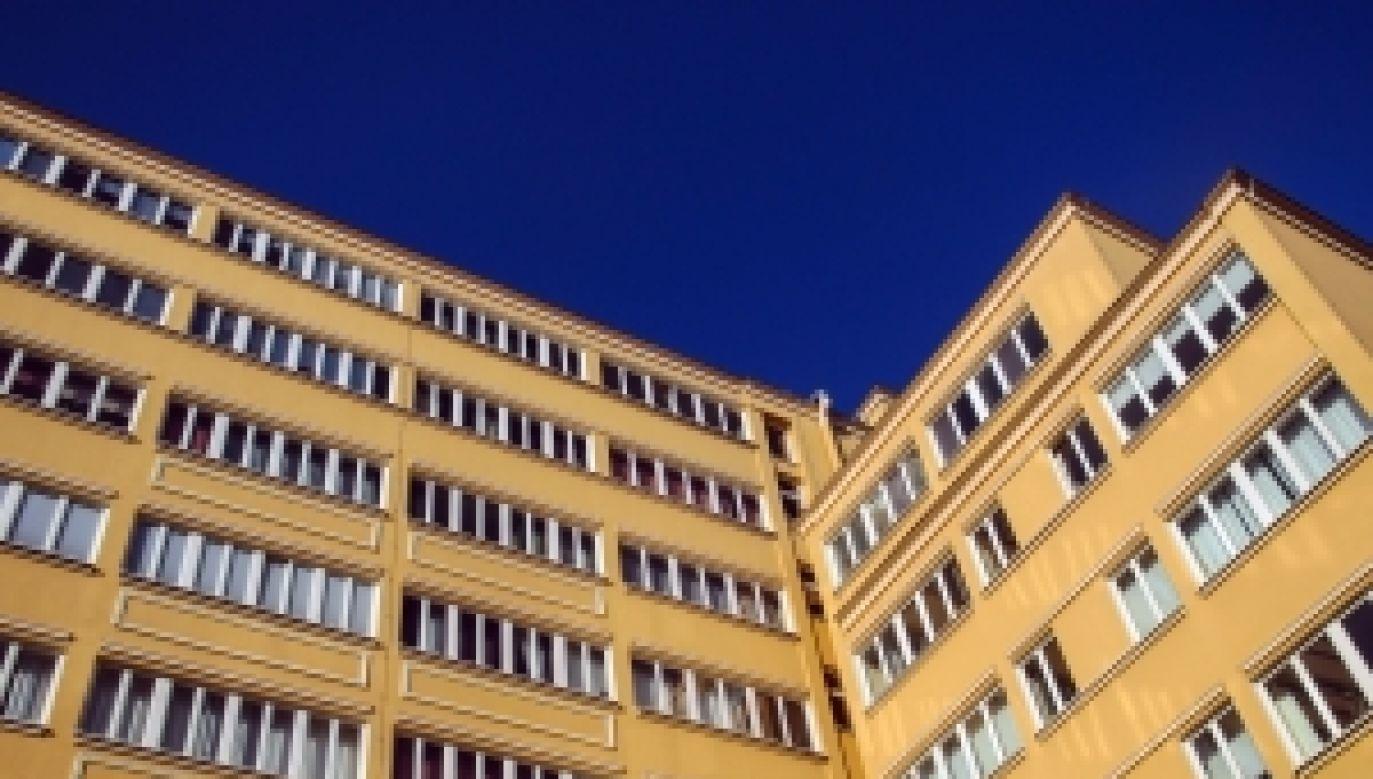 fot. sxc.hu/Ayla87