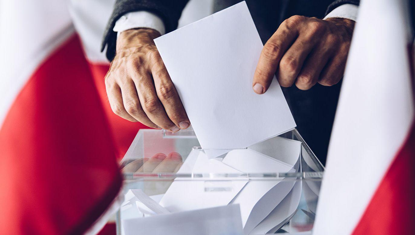 Wybory parlamentarne odbędą się 13 października (fot. Shutterstock/Daniel Jedzura)