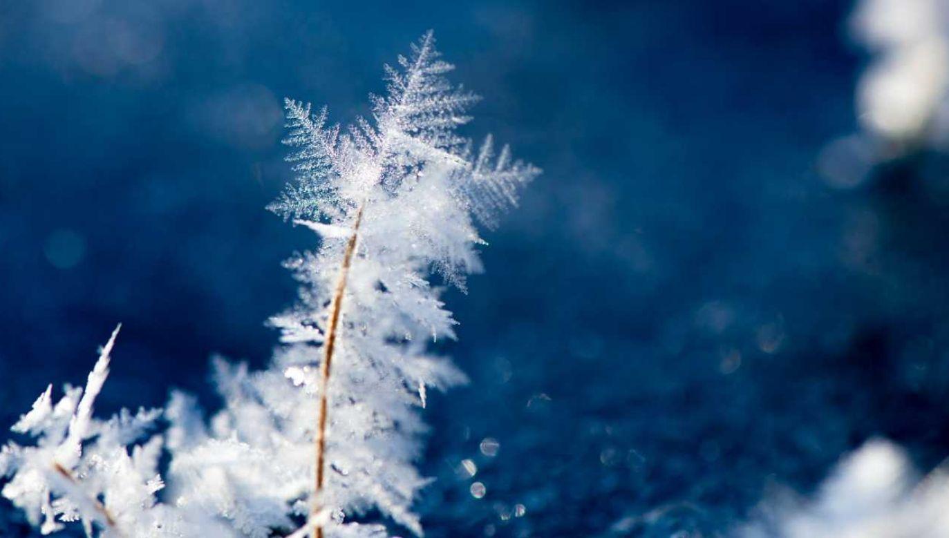 We wtorek temperatura na Węgrzech raptownie spadła o mniej więcej 15 stopni (fot. Pexels)